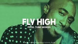[FREE] G-funk Rap Beat West Coast Hip Hop Instrumental - Fly High (prod. by Tune Seeker)