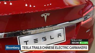 Tesla's China Dream Hits Roadblock Over Factory