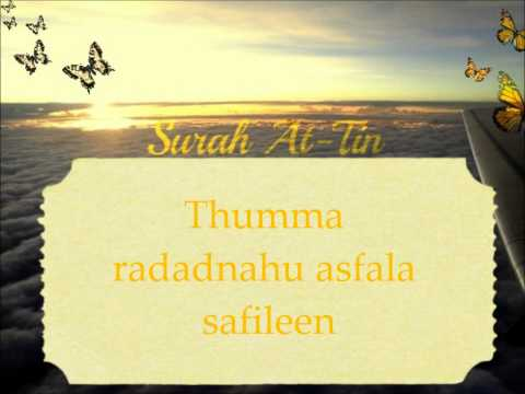 Surah At-Tin by Mishary Rachid Alafasy with transliteration