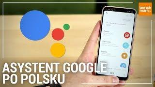 Asystent Google po Polsku - testujemy