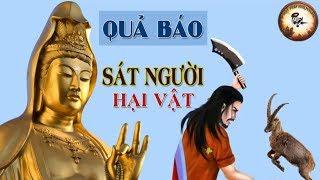 Có Nhân Ắt Có Quả Tạo Nghiệp Thì Nghiệp Theo - Sát Người Hại Vật   Truyện Phật Giáo Hay Nhất Có Thật
