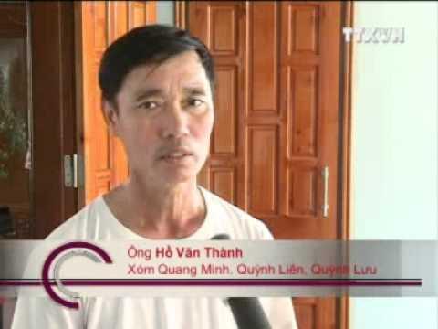 Nuôi tôm Nghệ An, Tôm thẻ chân trắng nghệ an, nghề nuôi tôm nghệ an, quỳnh lưu