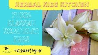 Herbal Kids Kitchen | Yucca Scrambled Eggs (S1:E3)