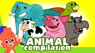 Learn Animals for Kids | Animal Cartoon Compilation for Children | Zoo Cartoon Cartoons