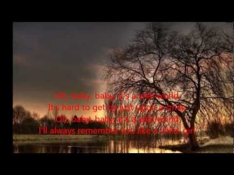 Cat Stevens -  Wild World (with Lyrics)