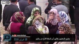 مصر العربية   معلمون فلسطينيون يطالبون أمن السلطة الافراج عن زملائهم