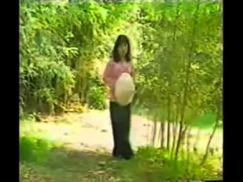 Hai mùa mưa nắng   Phi Nhung   randall orton