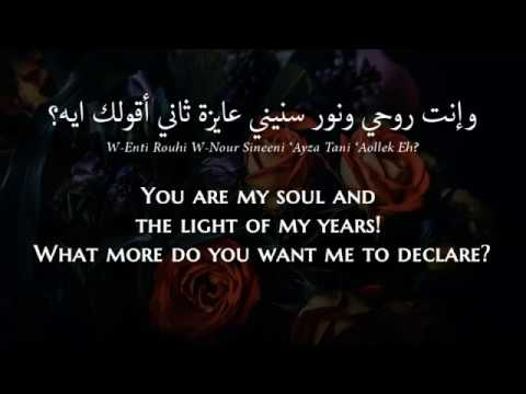 Hani Shaker - Lessa Btes'aly (Egyptian Arabic) Lyrics + Translation - هاني شاكر - لسا بتسألي