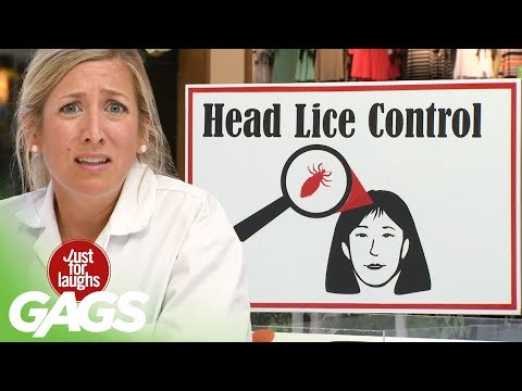 Doctors Find Giant Lice In Victims' Hair