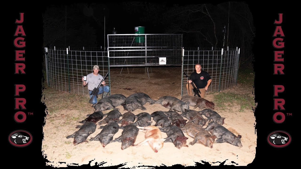 Trapping Game - Fish, Fowl or Foe