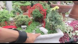 Build Your Own Storybook Land! M&m, Cute Fairy Gardens, And Bees...!!!