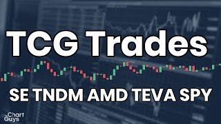 TCG Shop Talk - SE TNDM AMD TEVA SPY 08/20/2019 by ChartGuys.com