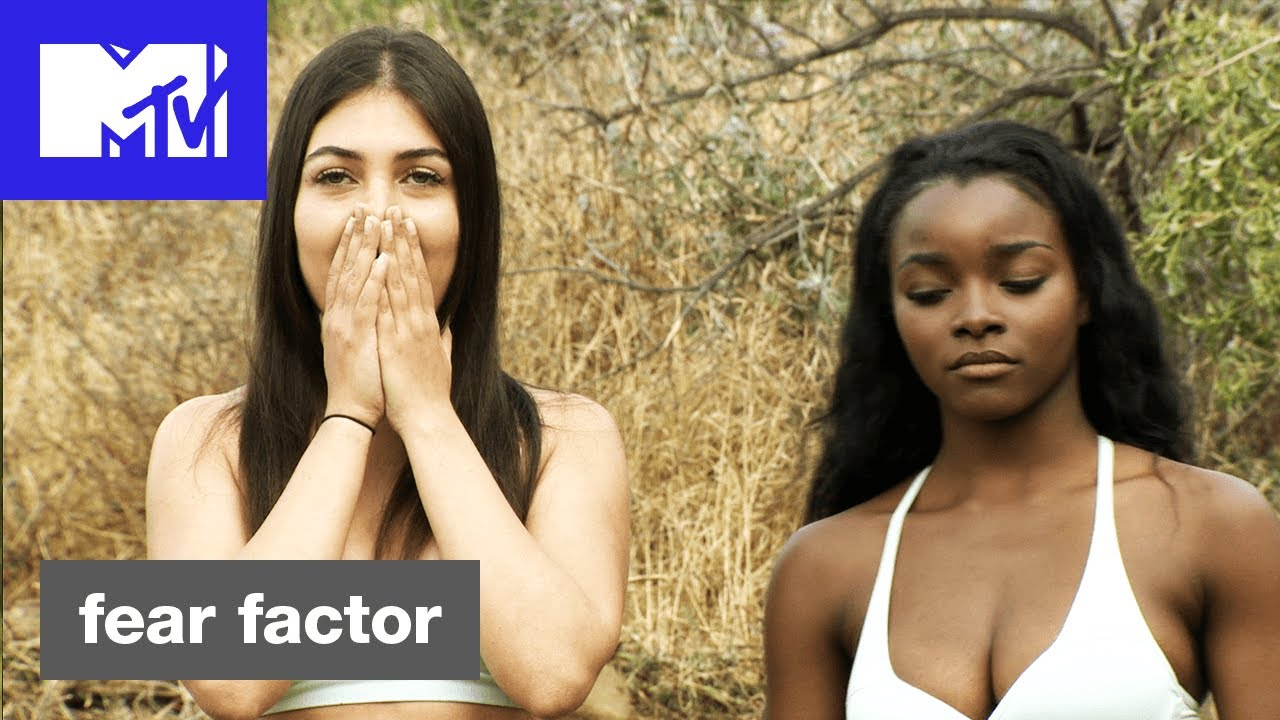 Fear Factor 2017