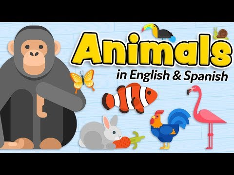 Animals in English and Spanish - Animales en inglés y español Bilingual for kids