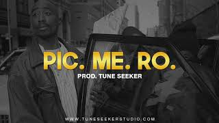 [FREE] 2Pac Type Beat | G-funk Boom-Bap Rap Instrumental - Picture Me Rollin (prod. by Tune Seeker)