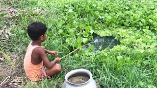 Amazing Little Boy Fishing By Hook Catching Climbing Perch Fish \u0026 Catfish by Hook.