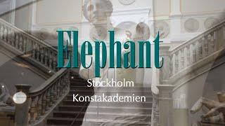 Stockholm Konstakademien