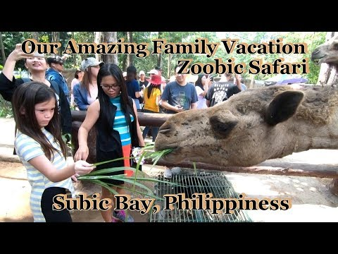 Our AMAZING Family Vacation To Zoobic Safari : Subic Bay, Philippines