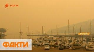 Погодные аномалии в мире: в США и Франции - аномальные морозы, в Австралии - пожары