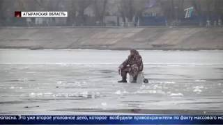 Рыба массово гибнет в Атырау