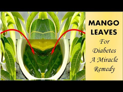 mango-leaves-health-benefits-for-diabetes,-a-miracle-remedy,-just-boil-leaves-and-solve-your-problem