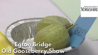 Egton Bridge Old Gooseberry Show