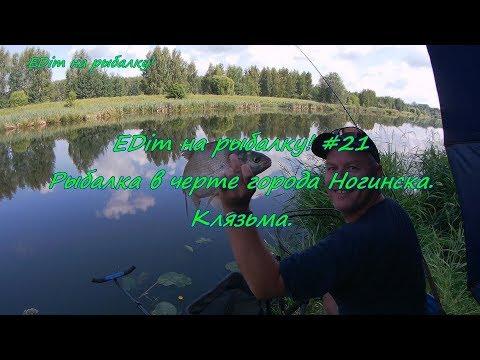 EDim на рыбалку! #21 Клязьма в черте города Ногинска.