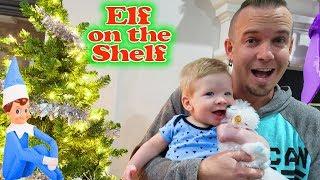 Baby's First Pet! Preston's Arctic Fox Elf On The Shelf Pet!! Day 6