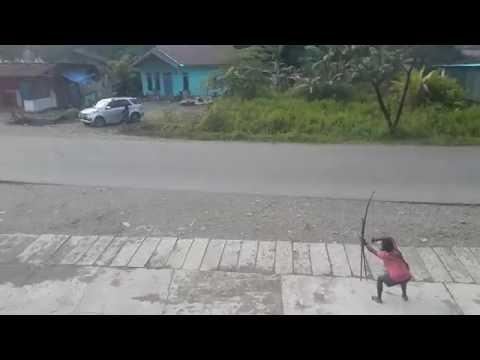 Video Amatir perang suku di timika 2016 sadis