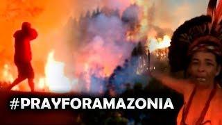 El Conmovedor Video Del Amazonas Que Le Esta Dando La Vuelta Al Mundo