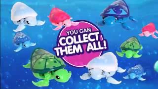 Little Live Pets Turtles 30