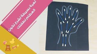 تجربة بسيطة لشرح تركيب العظام للأطفال | How bones are formed