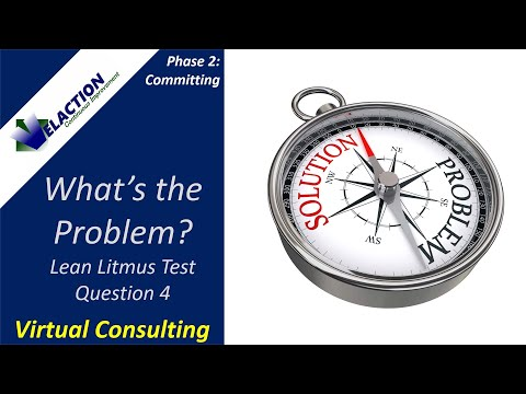 Lean Assessment Litmus Test Question 4 (Virtual Lean Consulting)