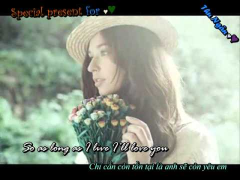 [ Vietsub + Lyric ] Beautiful in White - Shane Filan