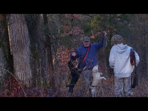 A Squirrel Hunting Adventure With Dogs And Kids