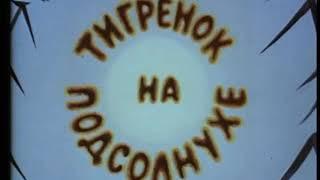 Тигрёнок на подсолнухе 1981  советские мультфильмы для детей