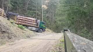 Holztransport Mutten