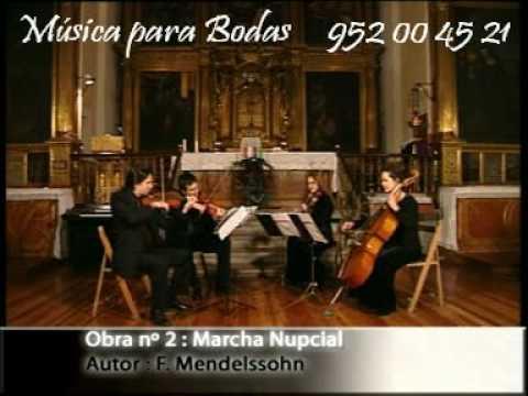 Música para Bodas y eventos en Málaga  Cuarteto de cuerda
