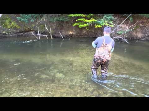 Salmon Fishing Betsie River Benzonia MI