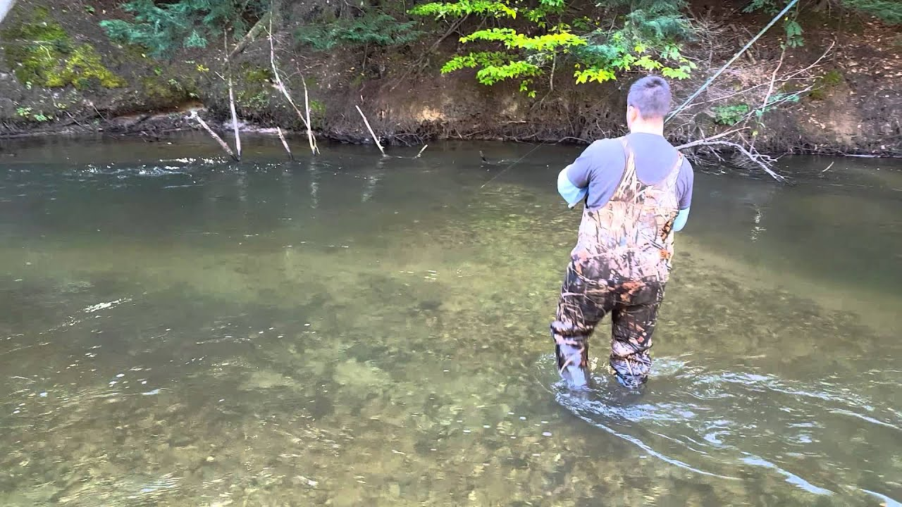 Salmon fishing betsie river benzonia mi youtube for Michigan out of state fishing license