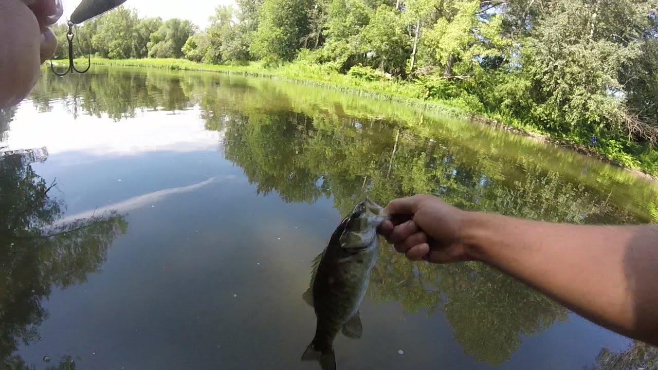 Cazenovia creek buffalo ny fishing youtube for Fishing in buffalo ny