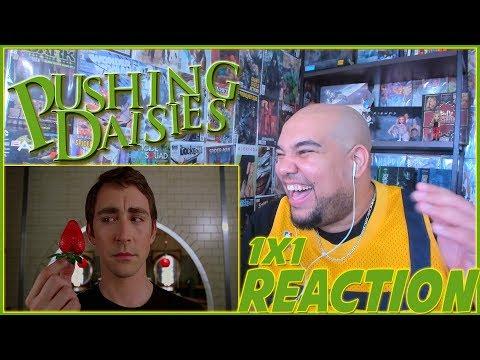 "Download Pushing Daisies Reaction Season 1 Episode 1 ""Pie-lette"" 1x1 REACTION!!!"