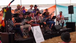 Hatherleigh Ukulele Bashers Chagstock  2014 - Dedicated Follower of Fashion - The Kinks
