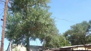 видео Купить квартиру в городе Астана недорого
