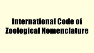 International Code of Zoological Nomenclature