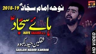 Ho Chuki Har Zulm Ki || Saqlain Haider || New Noha || TP Moharram