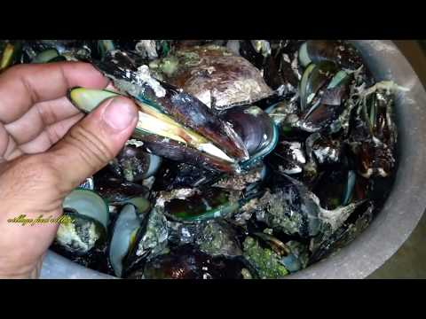 Mussels Masala Curry Recipe  - Catch & Cooking Mussels Gravy - How To Clean & Cook Mussels & Calms