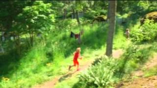 Heinähattu ja Vilttitossu -traileri
