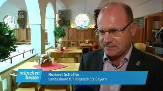 Bayerns Naturschutzverbände fordern besseren Schutz der Gewässer mit einem 10-Punkte-Programm