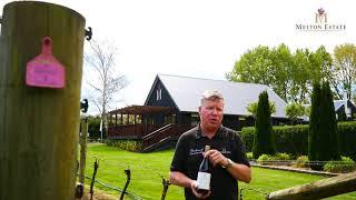 Melton Estate 2017 Pinot Noir